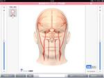 大塚製薬 脳血管3D iPadアプリ